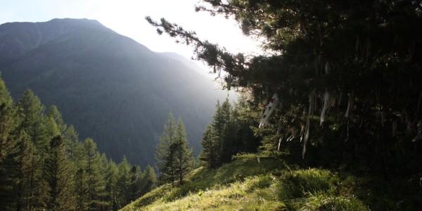 дарашкель 10 дорога на озеро