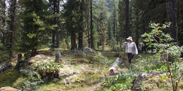 дорога на озеро дарашкель
